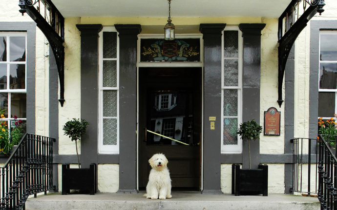 150 Dog Friendly Hotels In The Uk With Leash Free Play Areas For Dogs